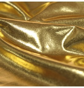 Metallic Lycra Fabric